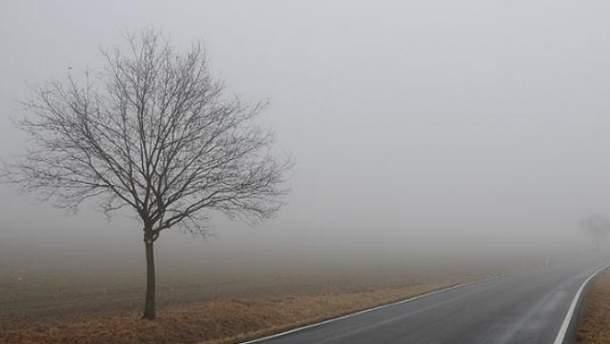 Туман на дорозі