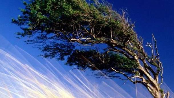 Возможны шквалы ветра
