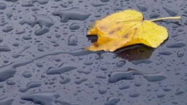 Прогнозируют дожди
