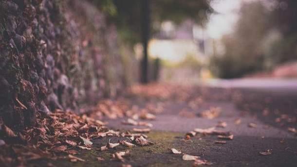 Суха і тепла осінь