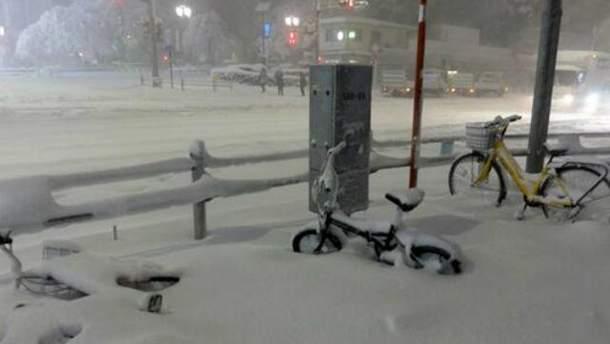 Снежная буря в Японии