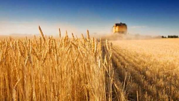 Павленко рассказал, какую долю экспорта в прошлом году составила агропродукция