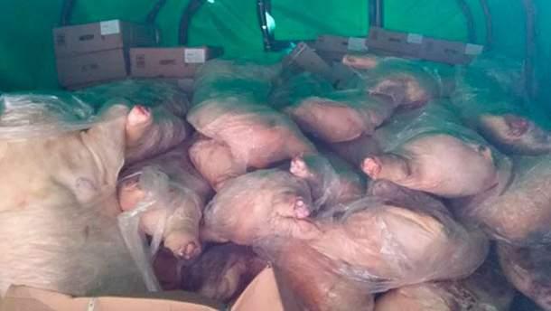 Контрабандное мясо для террористов