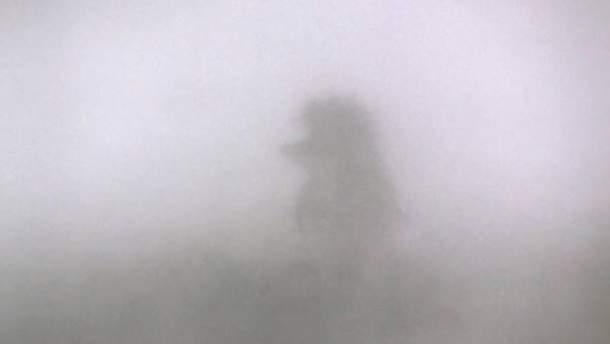Їжачки в тумані та фестиваль угару: реакція соцмереж на дим у Києві