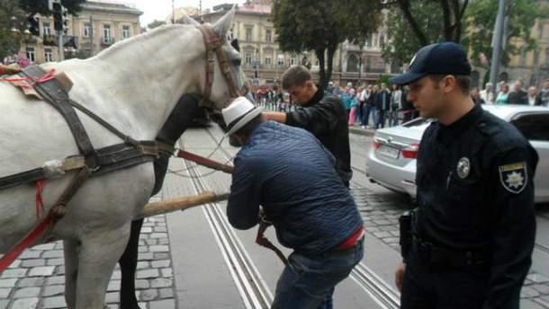 Поліція у Львові