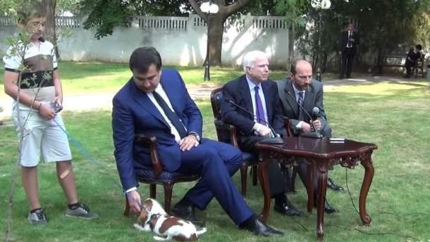 Саакашвили играл с собачкой