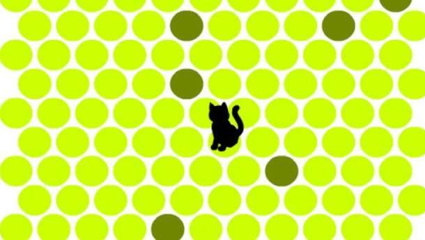 """Игра """"Поймать черного кота"""""""