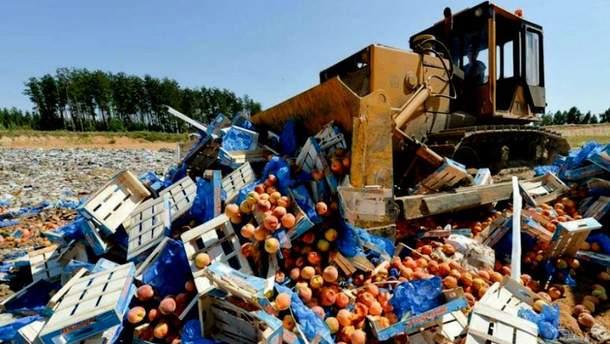 Знищення продуктів у Росії