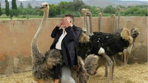 Виктор Янукович и страусы. Мем
