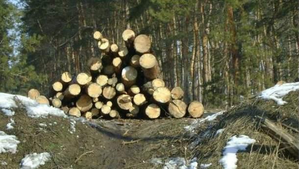 Вирубані дерева