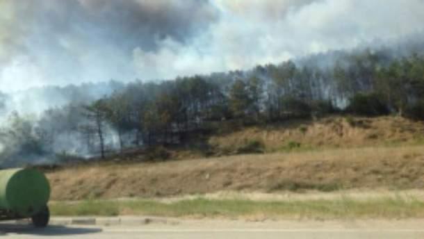 Возле Севастополя горит лес