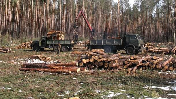 На Прикарпатті люди вже 10 років не підпускають лісівників до лісу. Губернатор пропонує ввести війська