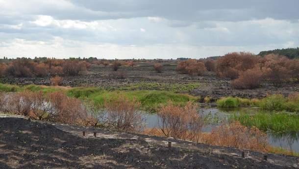 Чернобыльская зона после пожара