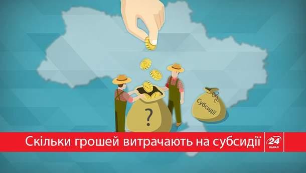"""Скільки держава витрачає грошей на субсидії за """"комуналку"""""""