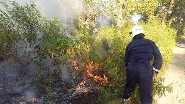 Пожежа на Трухановому острові