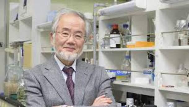 Японский биолог Йошиниру Осуми
