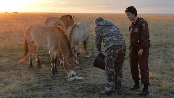 Владимир Путин с лошадьми