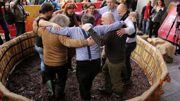 Львівське свято сиру і вина-2013