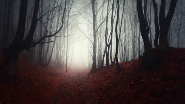 Осінь в Україні