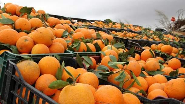 Загальна вага мандарин  становила понад 338 тонн