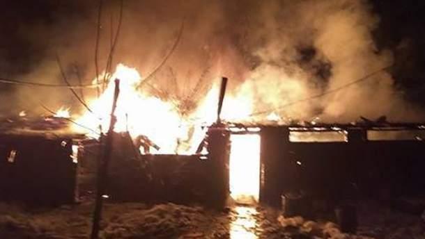 У Львові згорів притулок для тварин