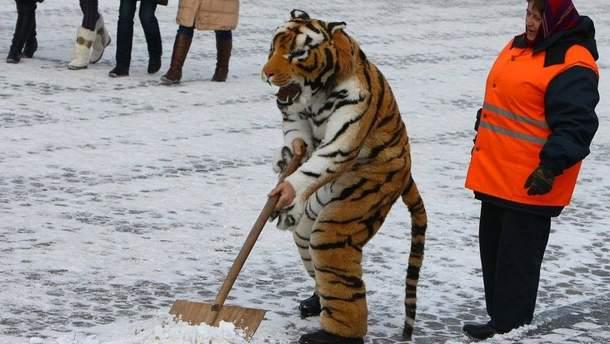 Снежит в Киеве