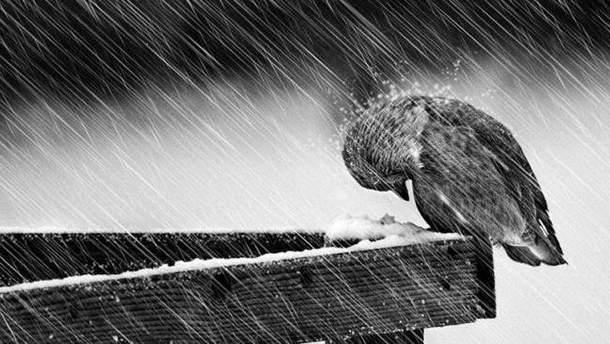 Буде мокрий сніг і дощ
