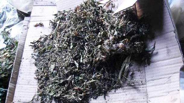 Партию марихуаны выявили в жителя Славянска