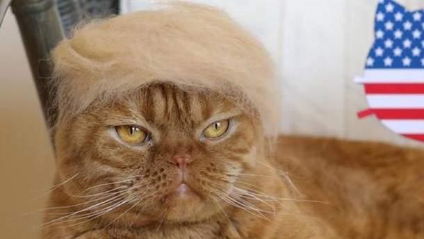 Зачіска, як у президента США Дональда Трампа