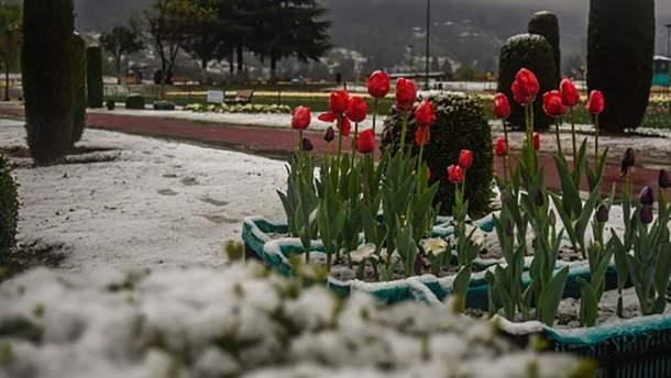 У кількох областях України випаде дощ зі снігом