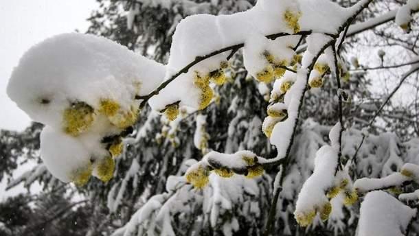 Зима у квітні