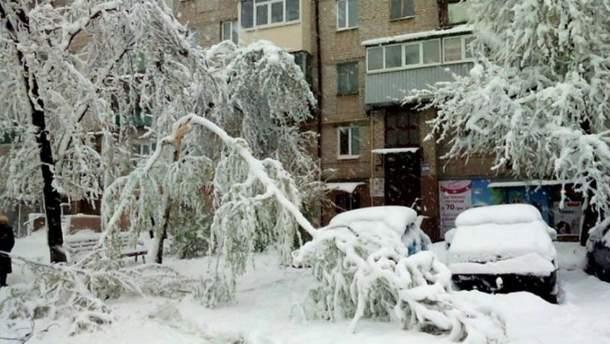 В Запорожье из-за снегопадов закрыли школы