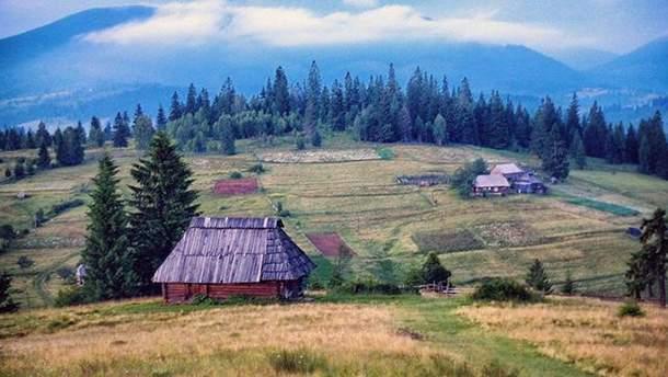 Жить в деревне - полезно для эмоционального здоровья