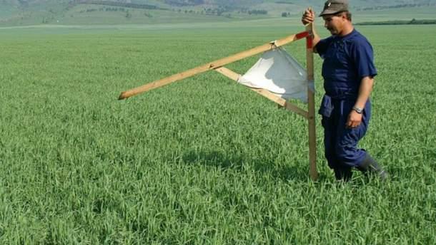 МВФ чекає від України запуску ринку землі