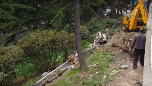 Вирубка дерев в Артеку