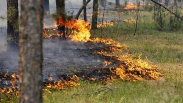Надзвичайна пожежна небезпека в 4 областях