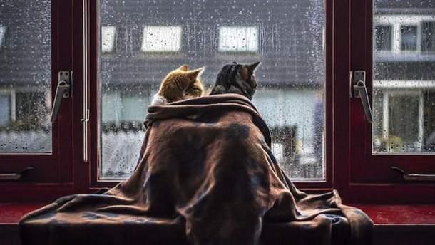 Циклон из России несет в Украину дожди