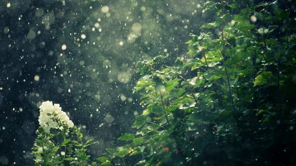 Прогноз погоди на 22 травня