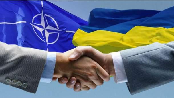 Наразі Україна не подаватиме заявку на членство в НАТО