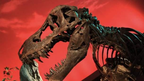 Ученые рассказали, возможно ли воскресить динозавров