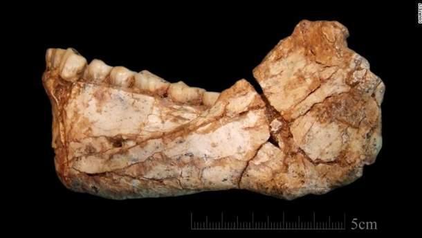 Ученые нашли останки Homo sapiens, которые появились 300 тысяч лет назад