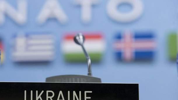 Україна не поспішає подавати заявку на членство в НАТО