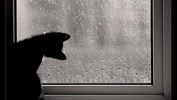 Погода в Украине станет прохладной и дождевой