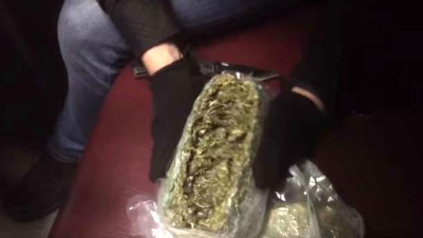 В Россию поставляли элитную марихуану из Украины