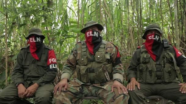 Представители группировки ELN