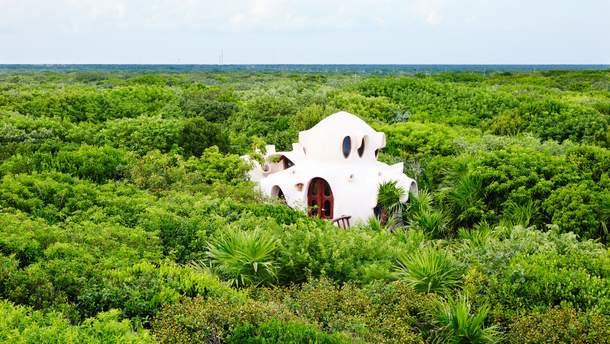 Готель на дереві у Мексиці