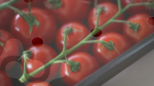 Ученые создали съедобную пленку для еды