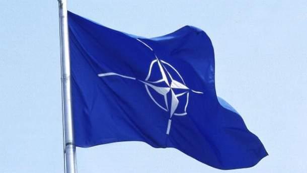 Хакерская атака: НАТО обещает помощь Украине