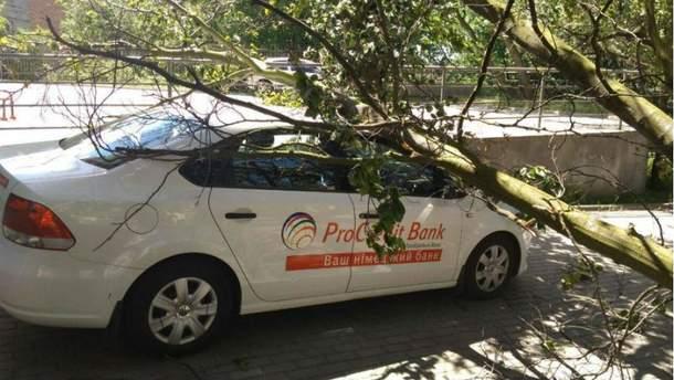 Негода у Львові валить дерева