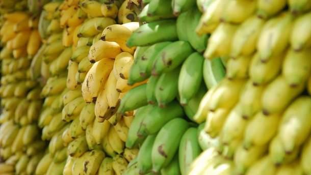 Ученые изобрели новый сорт бананов
